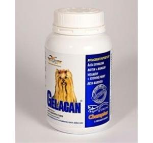 Gelacan Champion pro barevná plemena psů 150g