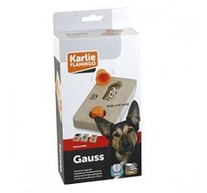 Interaktivní dřevěná hračka GAUSS Karlie