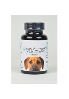 RenAvast Dog 60