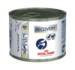 Royal Canin VD Fel / Can Recovery konz. 195g