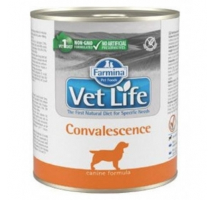 Vet Life Natural Dog konz. Convalescence 300g
