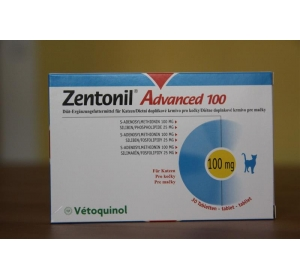 Zentonil Advanced 100 30 tbl